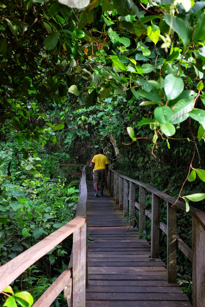 Trail Entrance, Lekki Conservation Centre