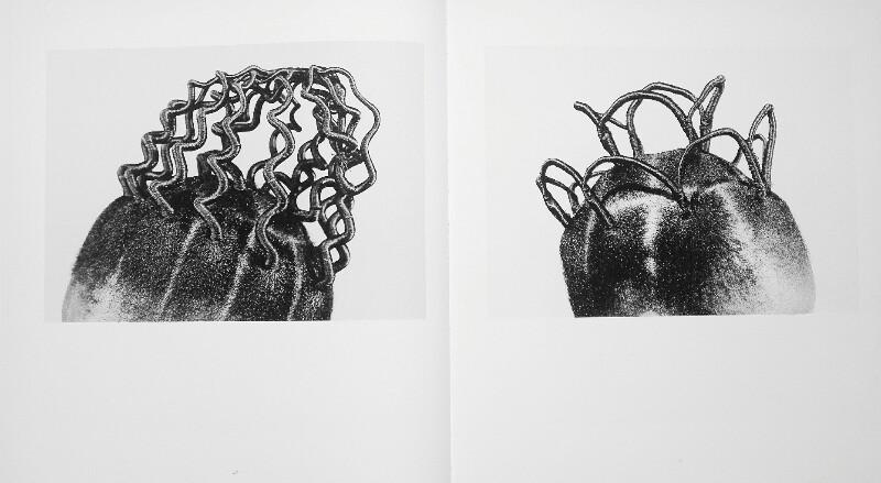 J.D. Okhai Ojeikere Photographs Book