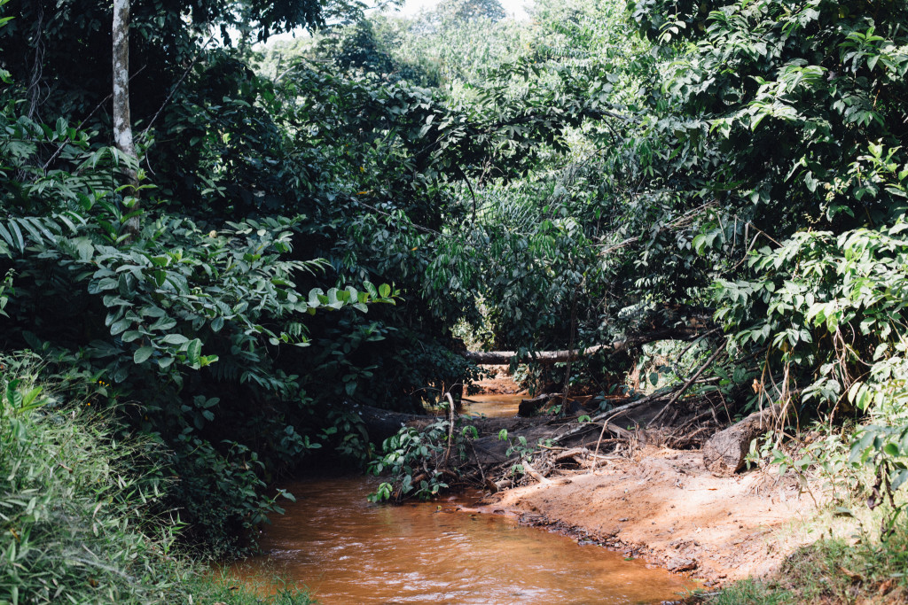 Stream, Awhum Waterfall and Cave, Enugu