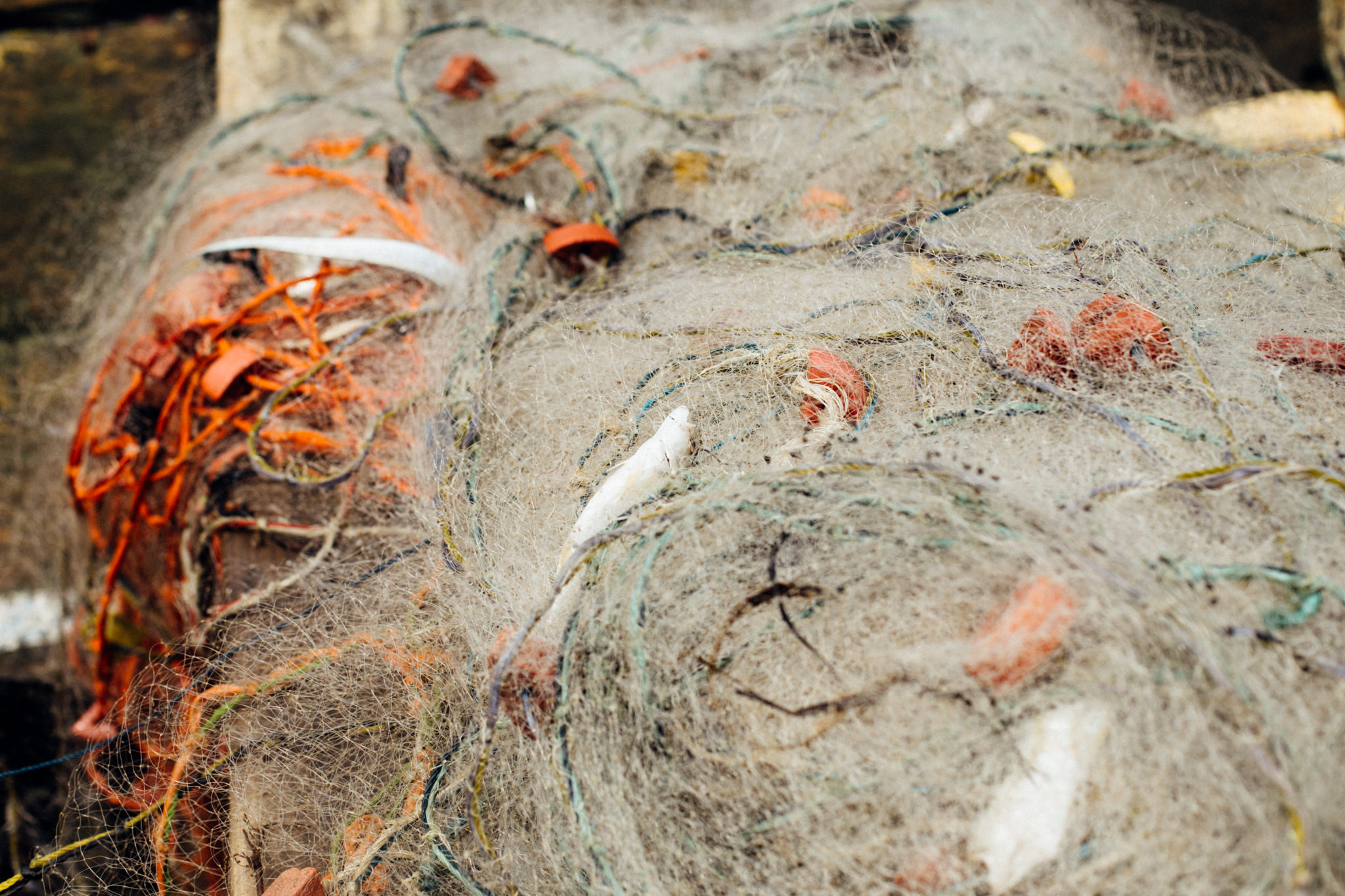 Fishing net, Ibeno Beach
