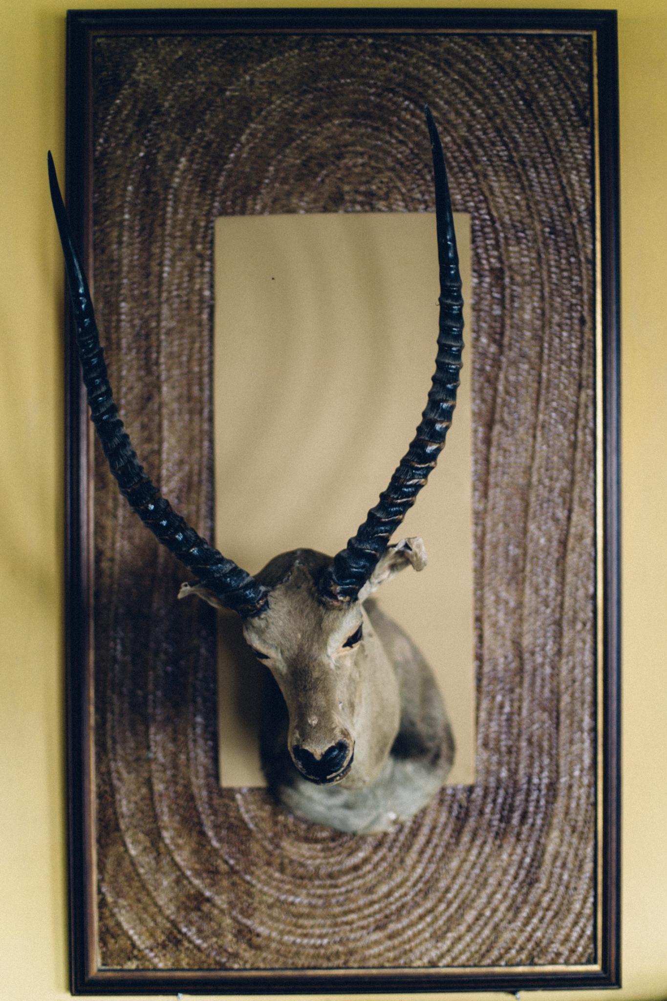 Animal head decor, Obudu