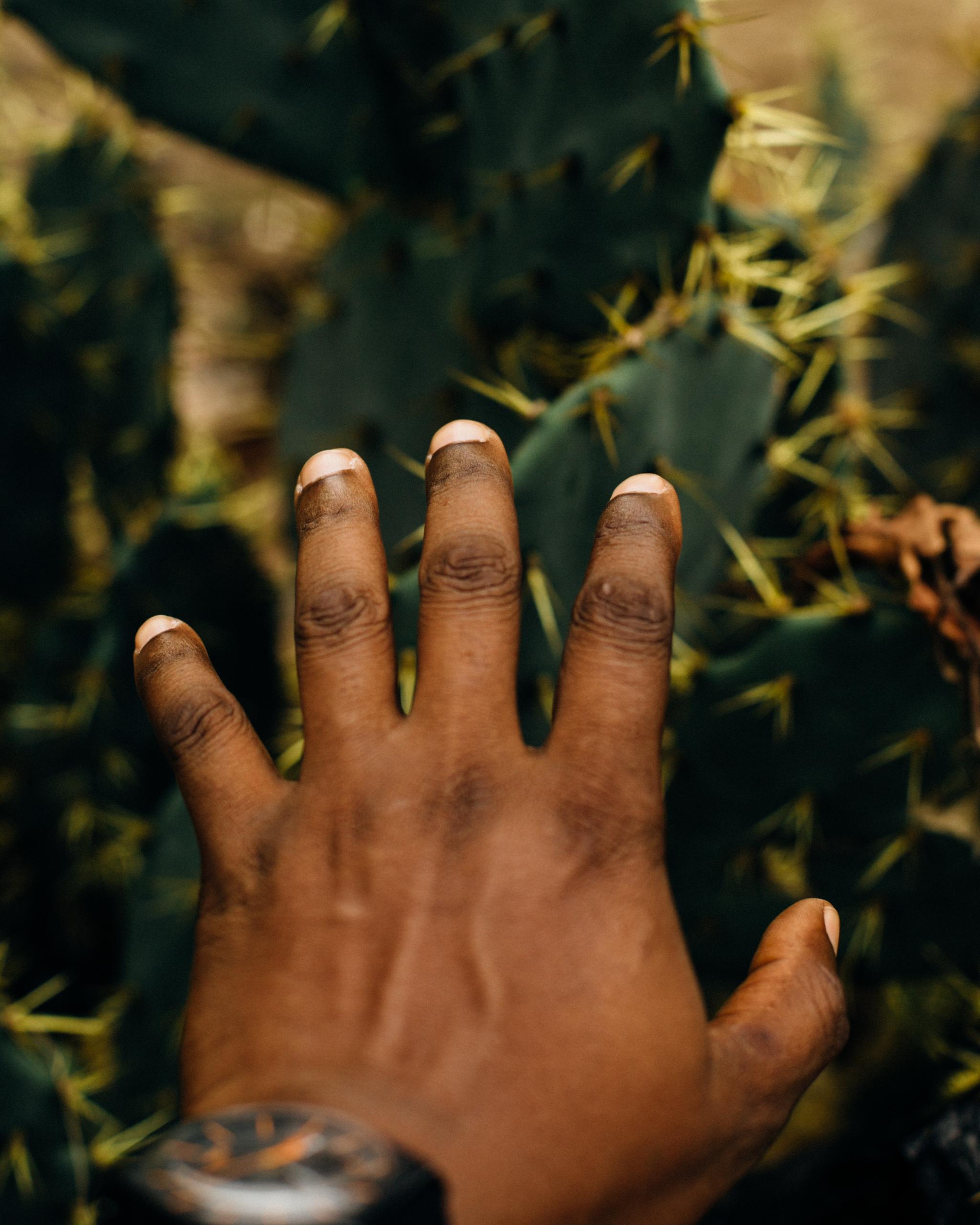 Hands and Thorns, Tarkwa Bay