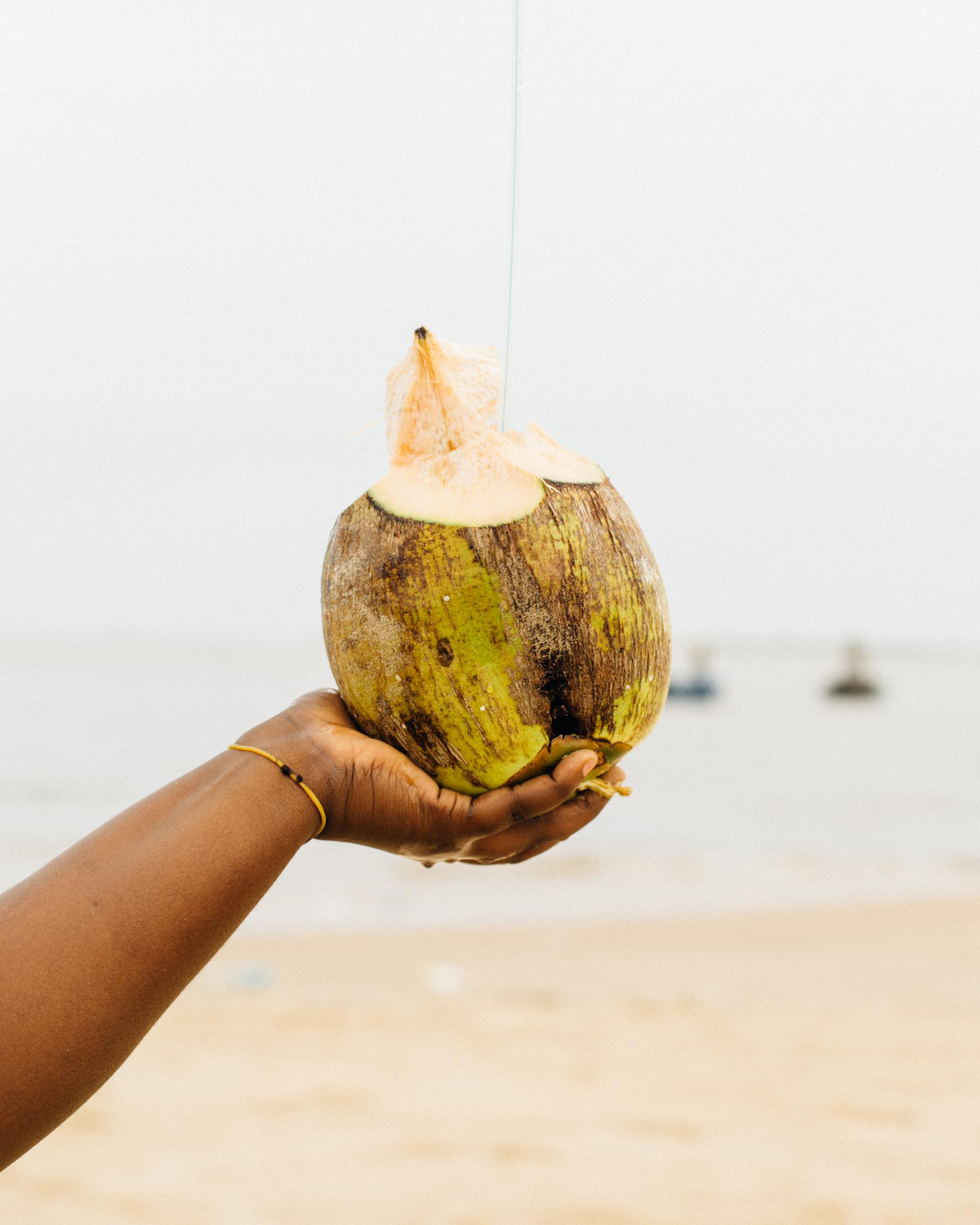 Coconut, Tarkwa Bay Baech