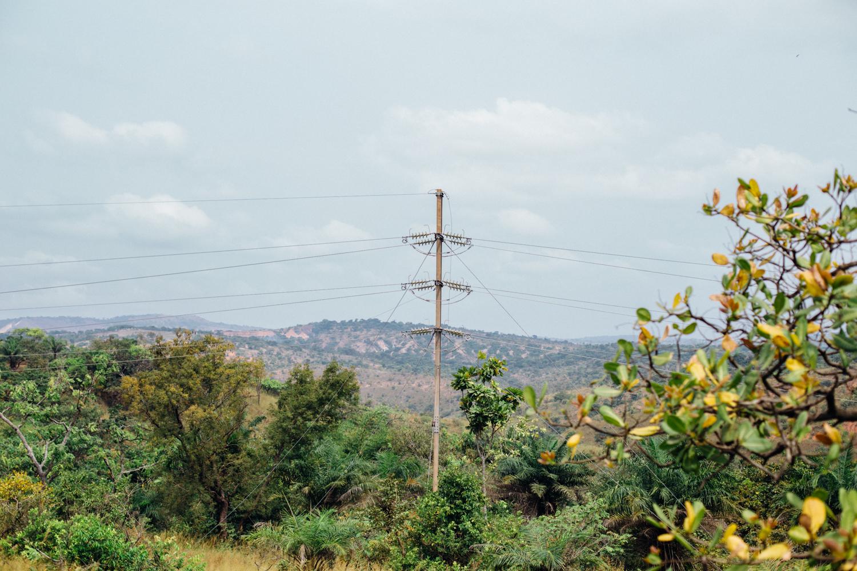 Ngwo Pine Forest, Enugu