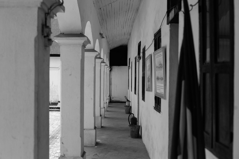 Nanna's Museum, Koko