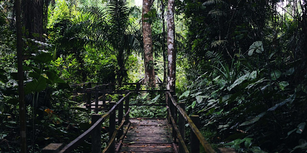 Travel Destination: Finima Nature Park