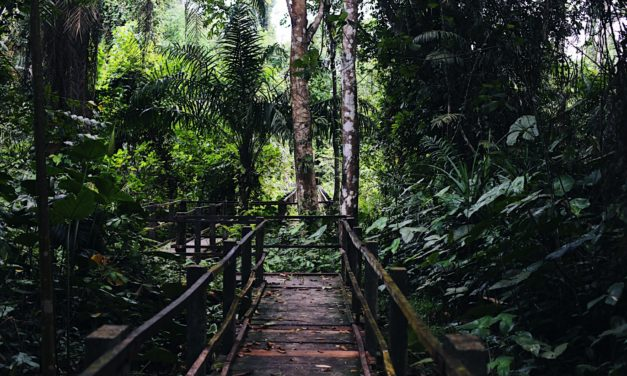 Travel Destination: Finima Nature Park